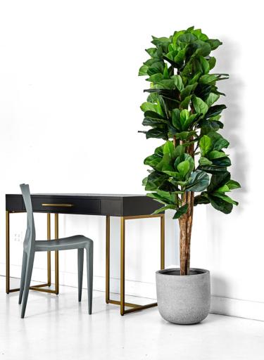 Shop 6ft Artificial Fiddle Leaf Fig Tree Faux Fiddle Trees