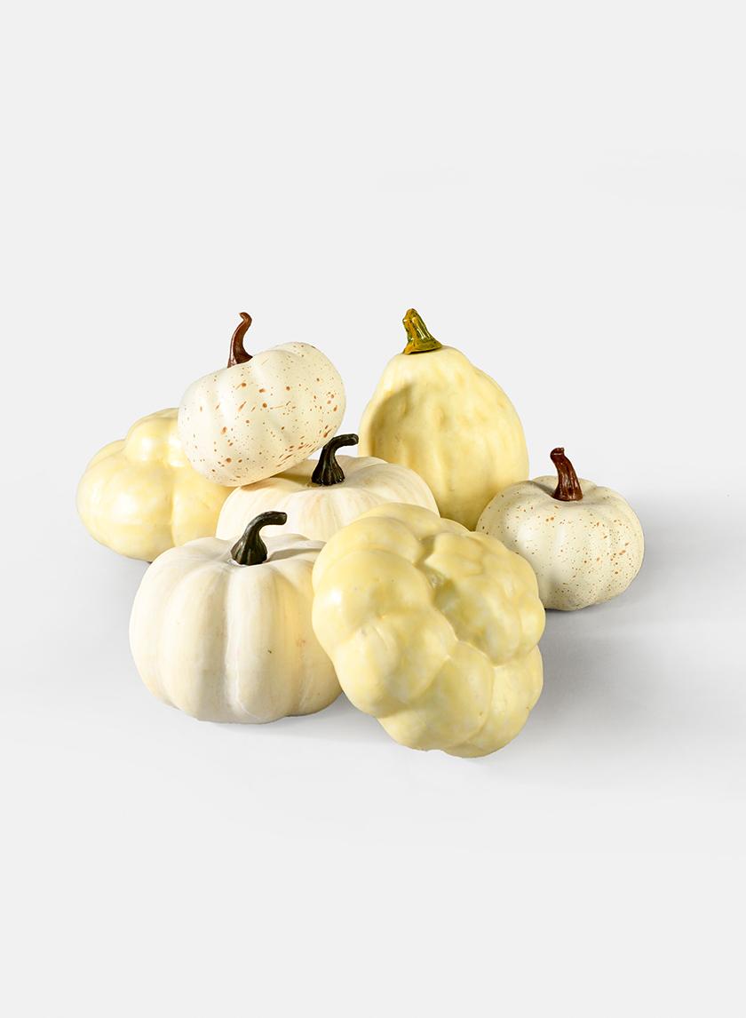 Assorted Harvest White Pumpkins, Set of 7
