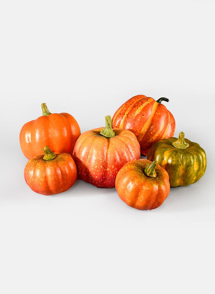 Assorted Pumpkins, Set of 6