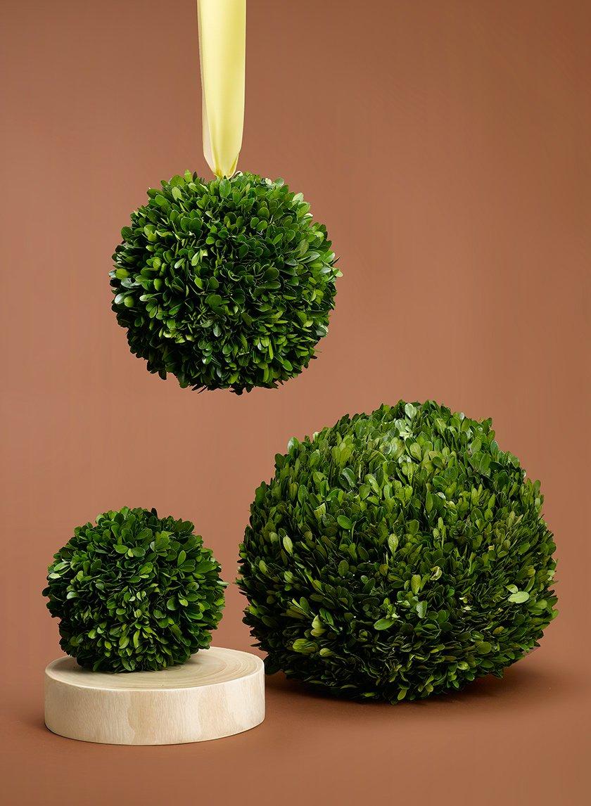 6-, 8-, 12-inch Boxwood Balls