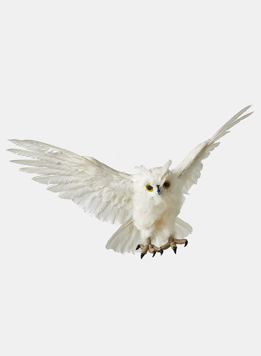 fake white owl decor props