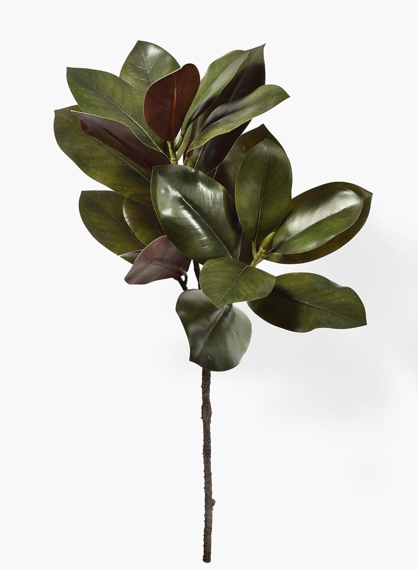32in Magnolia Leaves Spray