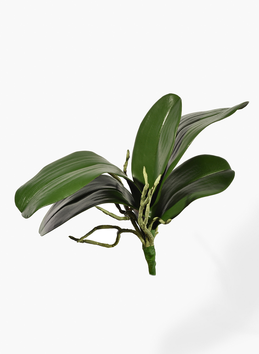 11in Orchid Leaf Bush