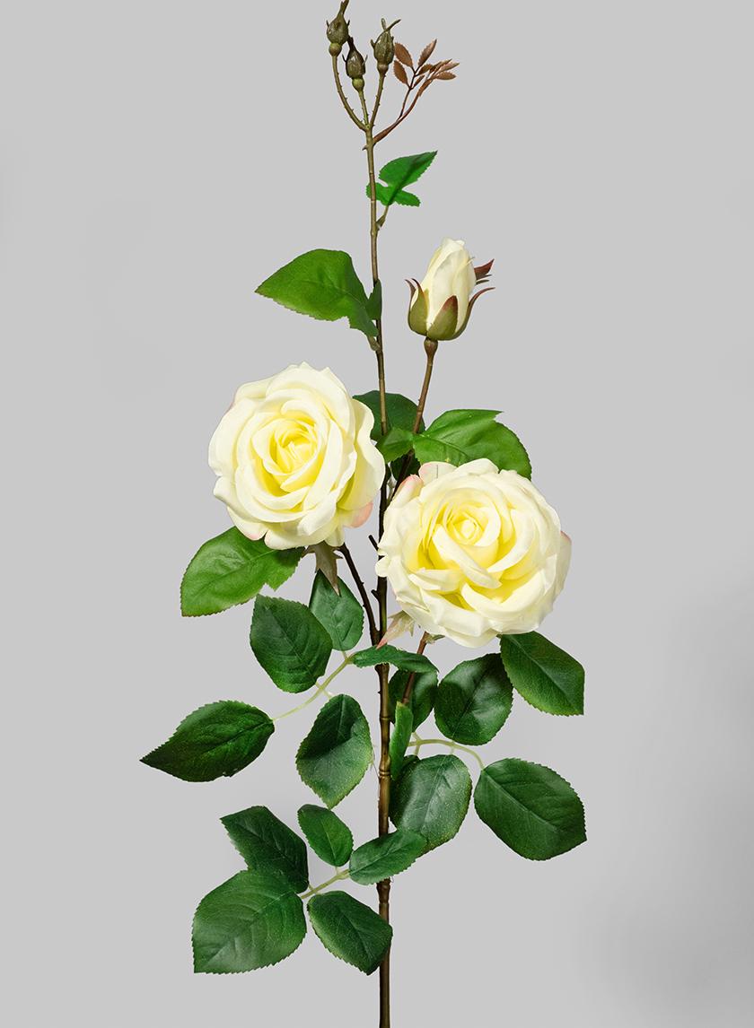 35in White Rose Spray
