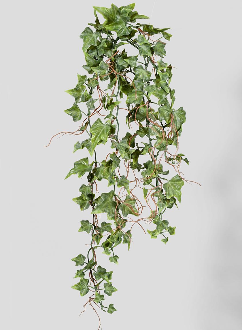 25in Ivy Hanging Bush