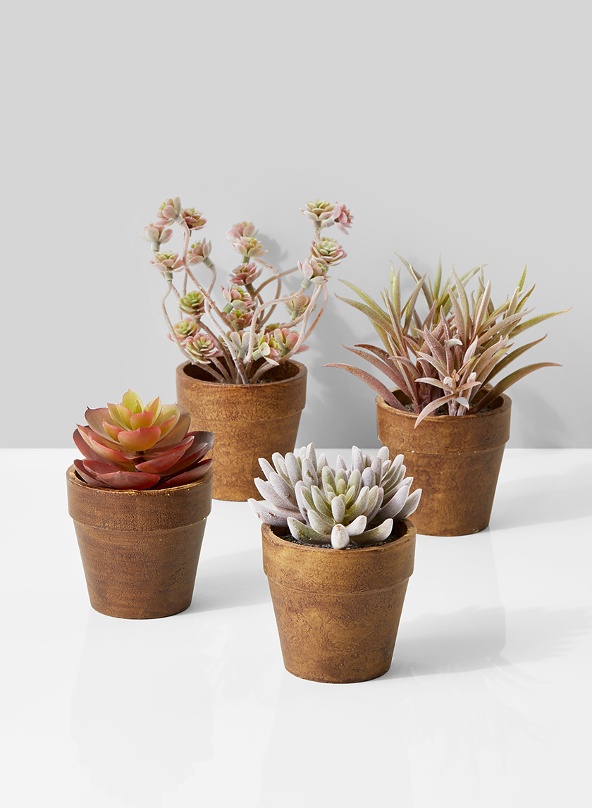 artificial mini succulent plants in paper mache pots