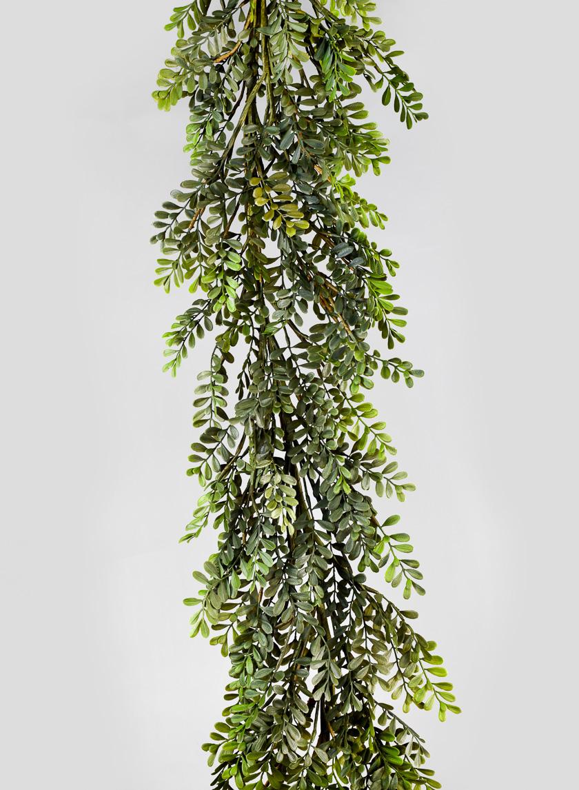 6ft Boxwood Leaf Garland