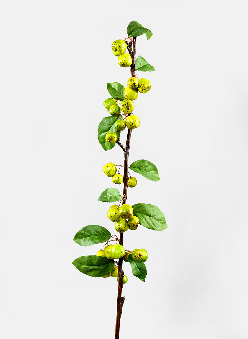 37in Green Berry Branch