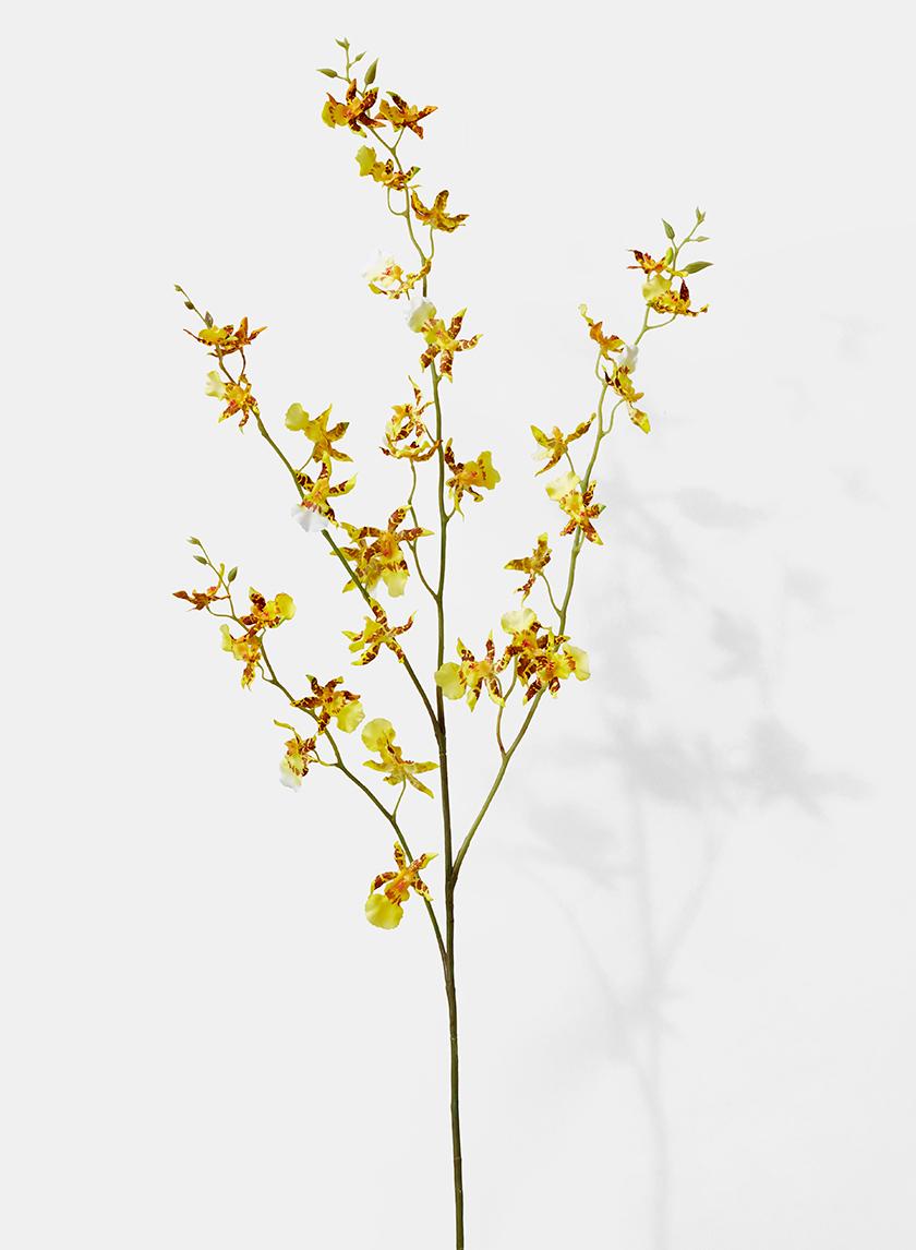 42in Tiger Orchid Spray