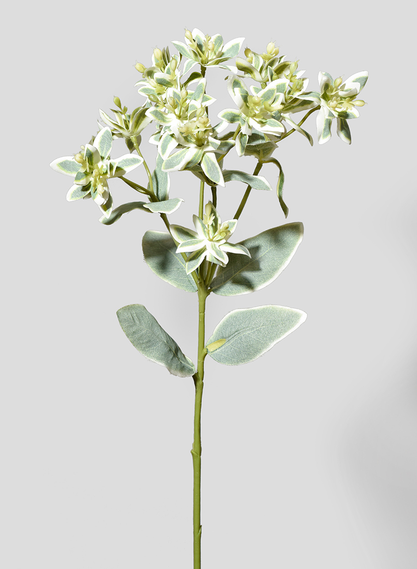 18in White & Green Eucalyptus Spray