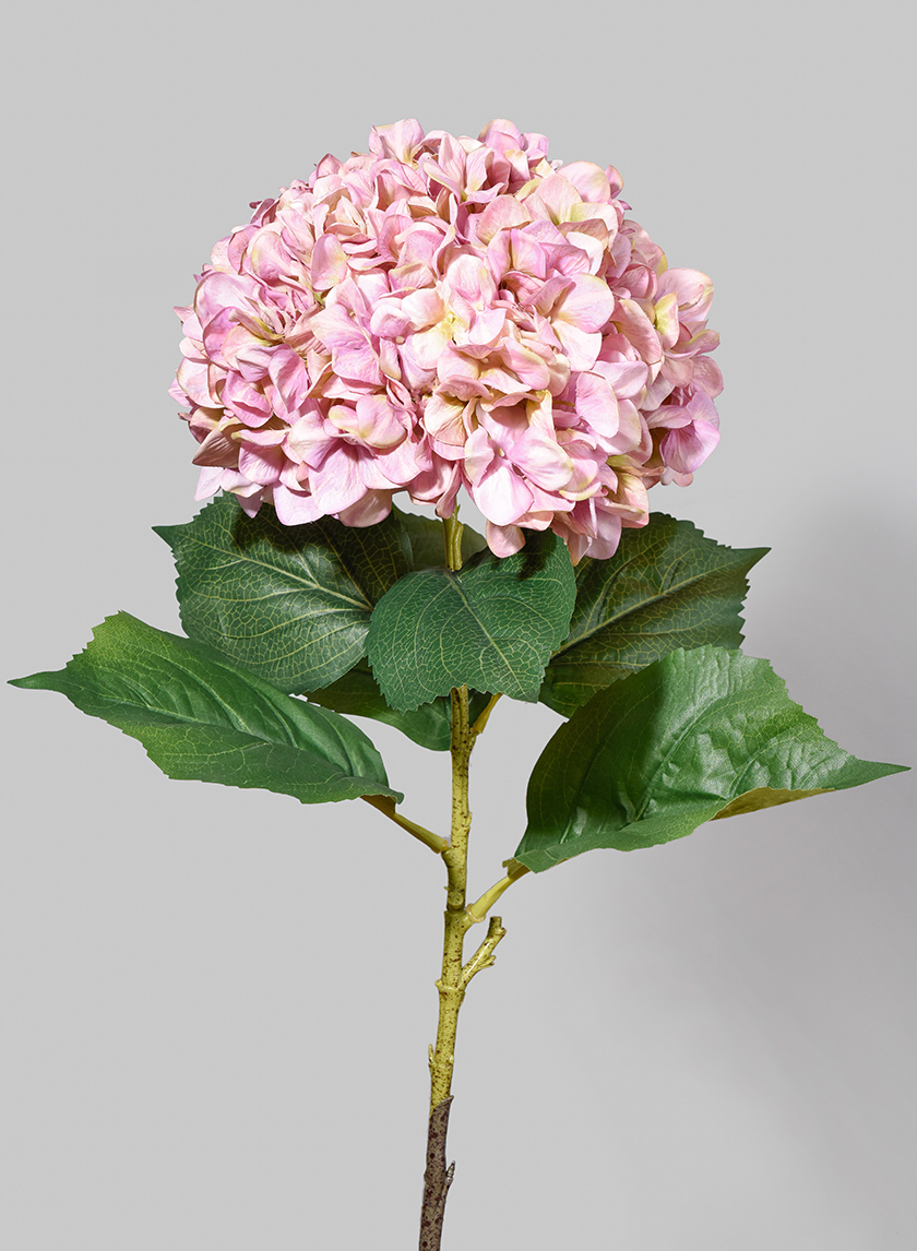 42in Giant Pink Hydrangea