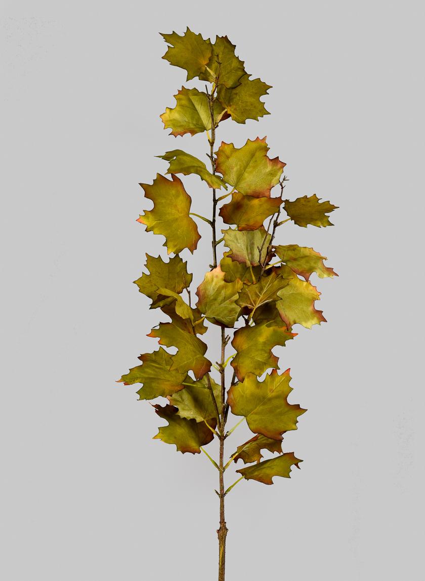47in Maple Leaf Spray