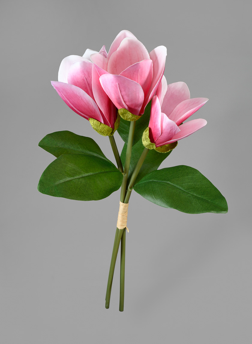 16in 3-Stem Pink Magnolia Bouquet