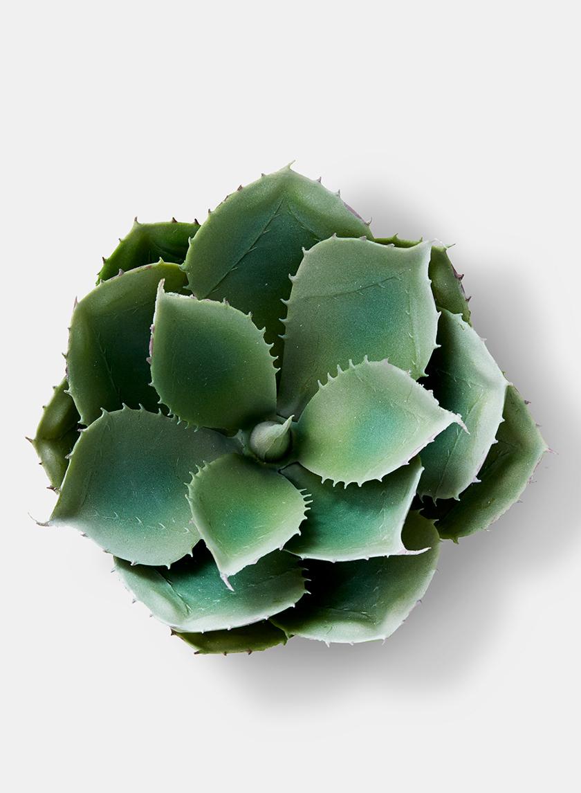 artificial aloe succulent plant
