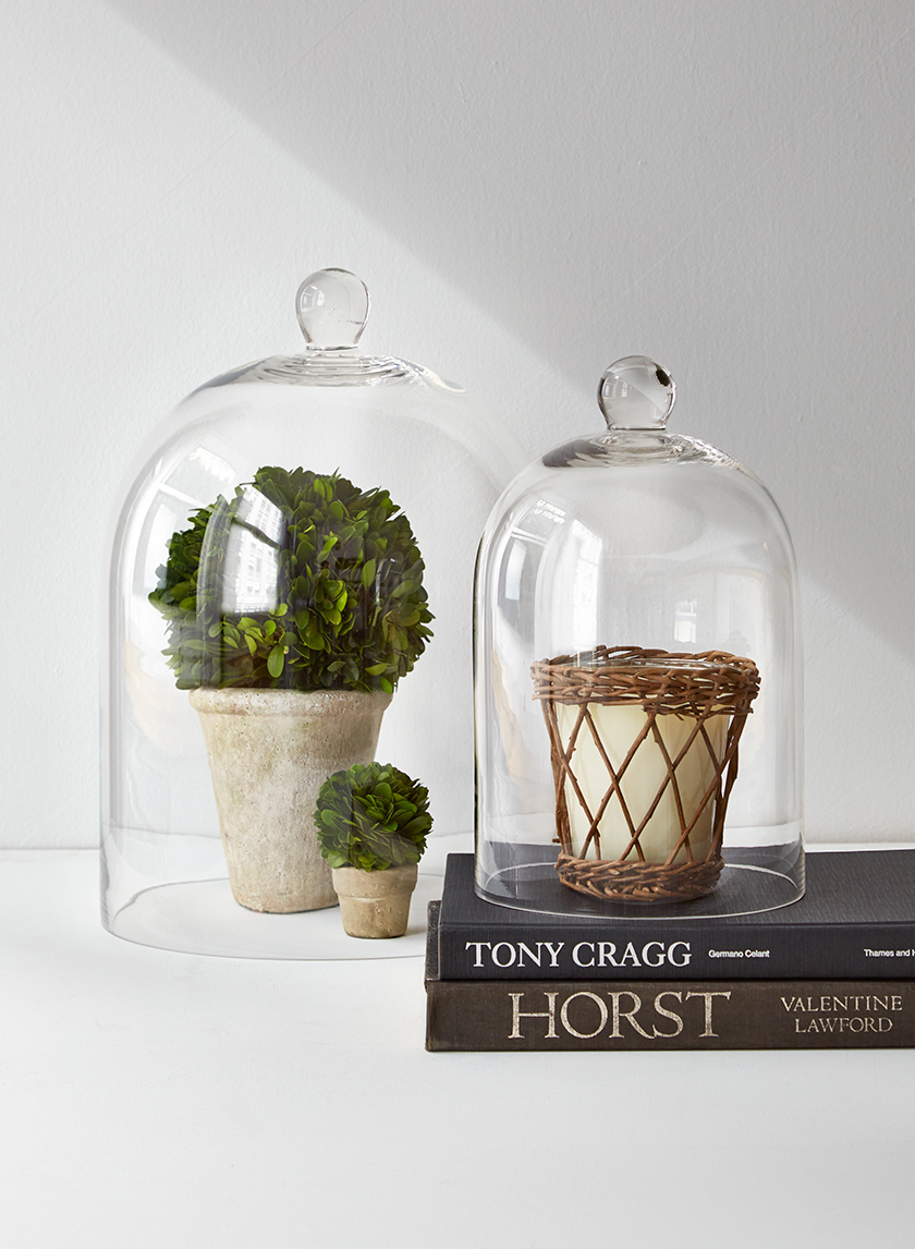 Clear Glass Cloches