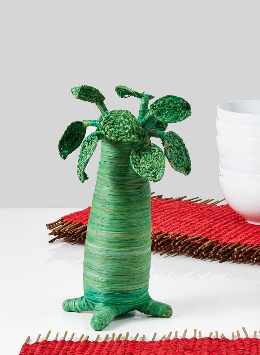 green raffia madagascar baobab tree