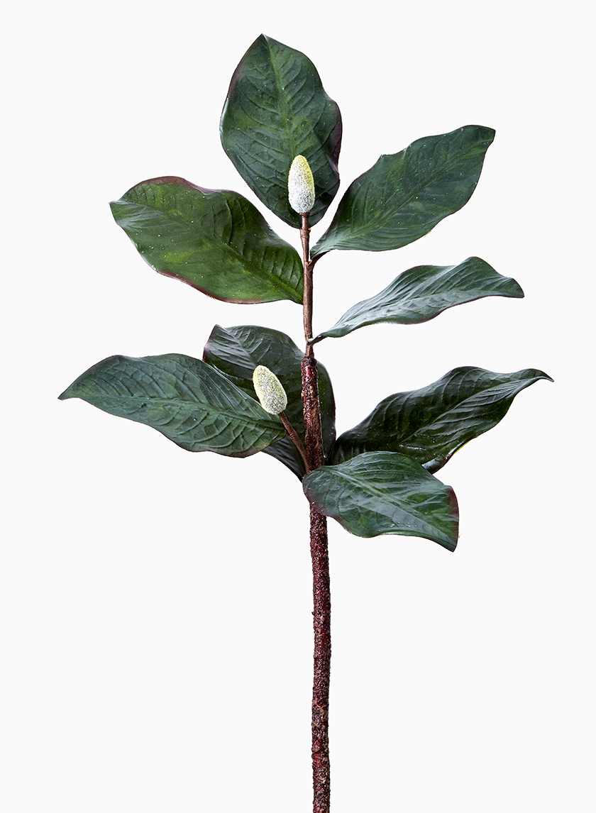 artificial magnolia leaf branch