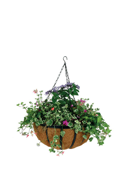 12in & 14in Hanging Basket With Coco Liner