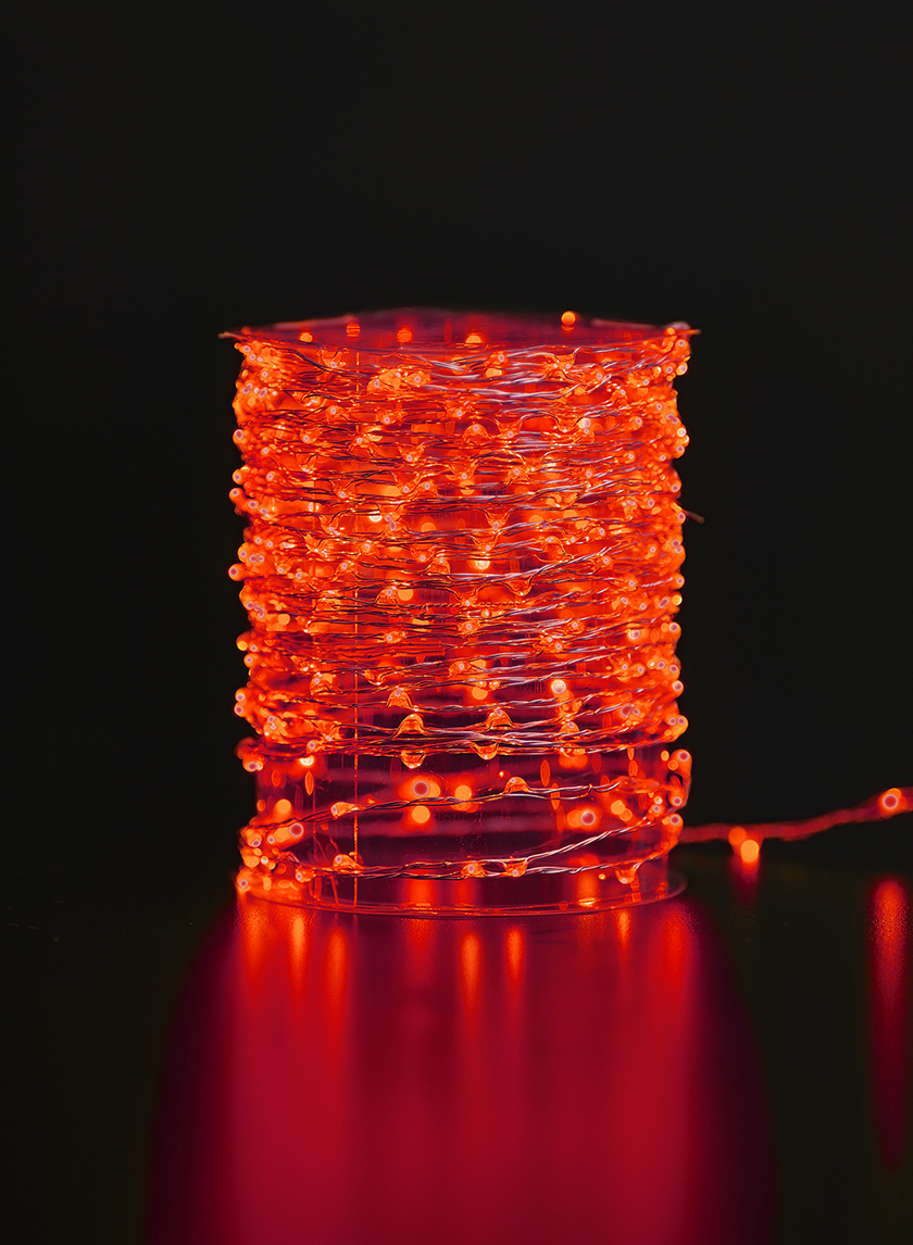 Red Naked Wire L.E.D. Lights String