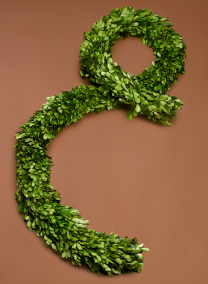 6FT PRESERVED BOXWOOD GARLAND