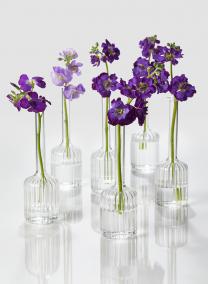 6 1/2in Optical Glass Cylinder Bud Vase, Set of 6