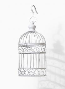 small white vintage outdoor wedding birdcage