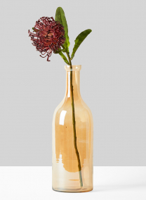 gold amber bottle vase with protea
