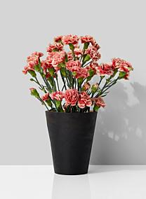 mini carnations black gold metal vase