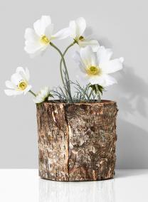 4 1/2in Birch Bark Finish Glass Vase
