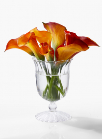 5 1/4in Optical Glass Mini Urn Vase