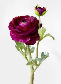 purple ranunculus silk flowers