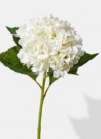 31in White Hydrangea Spray