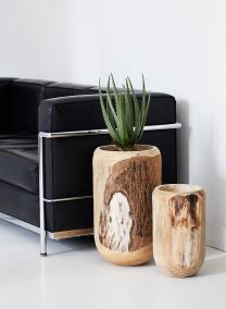 14in Paulownia Wood Pot