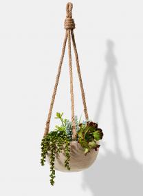 Hanging Paulownia Wood Bowl