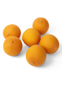 Artificial Display Oranges fruits
