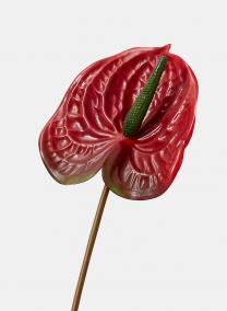red anthurium silk flowers