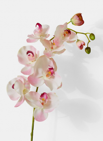 pink orchid silk flowers