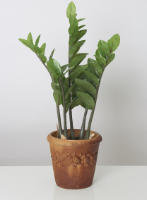 Rust Cement Fruit Garland Pot