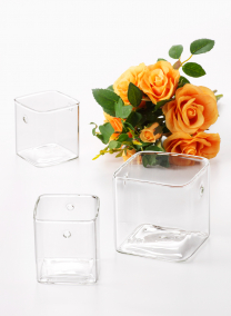 Square Glass Wall Vases