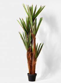 yucca plant silk trees for display props