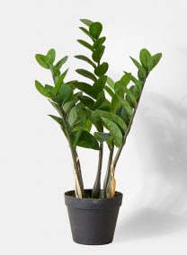 zanzibar gem fake artificial plant in pot