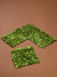 12in Square Preserved Boxwood Mat