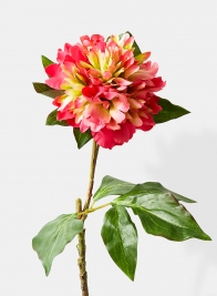 22in Frilly Cerise Peony