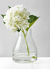 9 1/2in Terrarium Glass Vase
