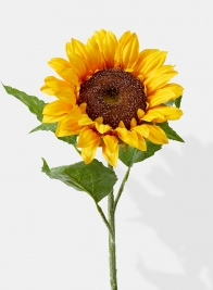 27in Large Yellow Susan Sunflower