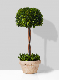 Half 10-inch Boxwood Ball Topiary