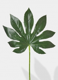 24in Fatsia Leaf, Set of 6