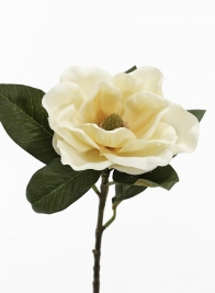 28in Antique Yellow Magnolia