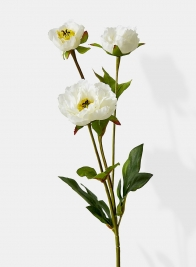 white princess peonies silk flowers