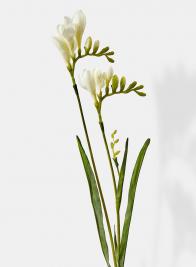 white french freesia silk flowers
